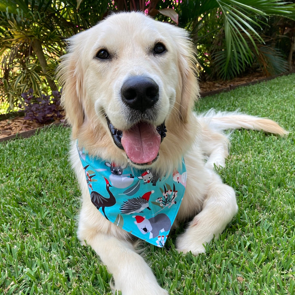 "Xmas Dog Tie On Bandana, Dark Aqua ""Aussie Wildlife"""