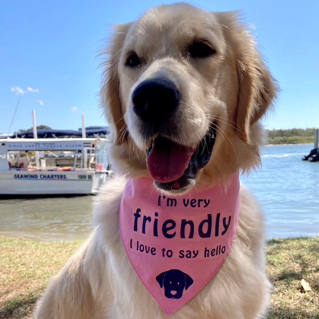 """FRIENDLY"" Dog Bandana - Choice of colours"