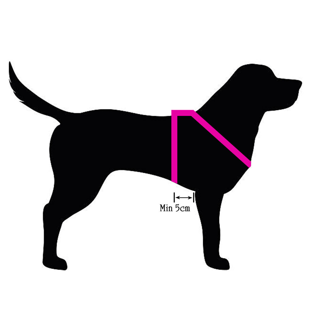 20mm Gentle Harness Puppy / Small Dog, SOFT RIBBED Polyester Webbing - Choice of colour