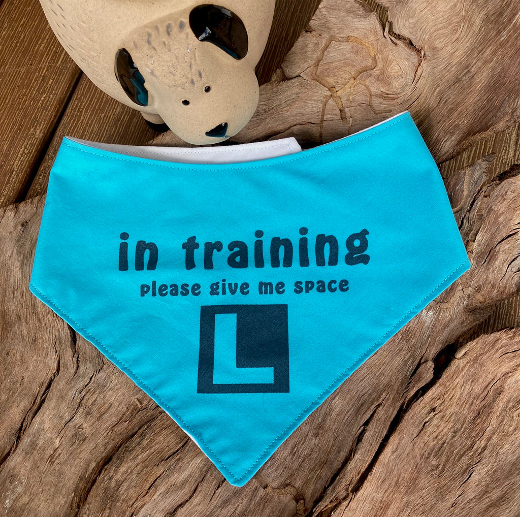"""In Training Please Give Me Space - L Plate"" Handmade Dog Bandana - Bright Blue"