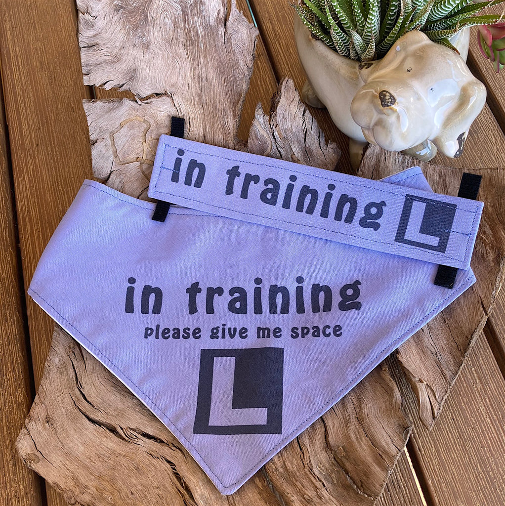 """IN TRAINING"" Bandana and Lead/Collar Strap Set"" - Soft Purple"