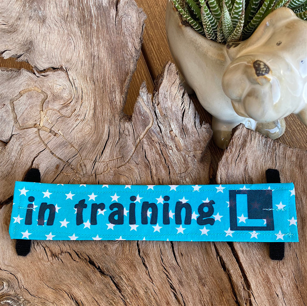 """IN TRAINING"" Lead/Collar Strap - Blue Stars"
