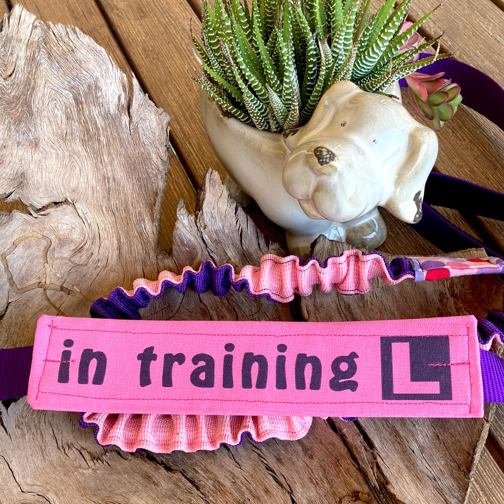 """IN TRAINING"" Lead/Collar Strap - Plain Pink"