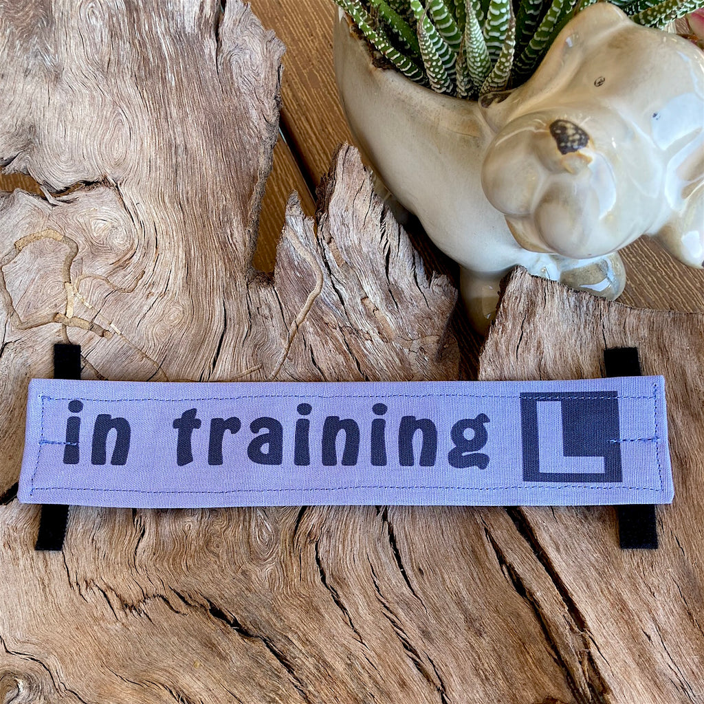 """IN TRAINING"" Lead/Collar Strap - Soft Purple"