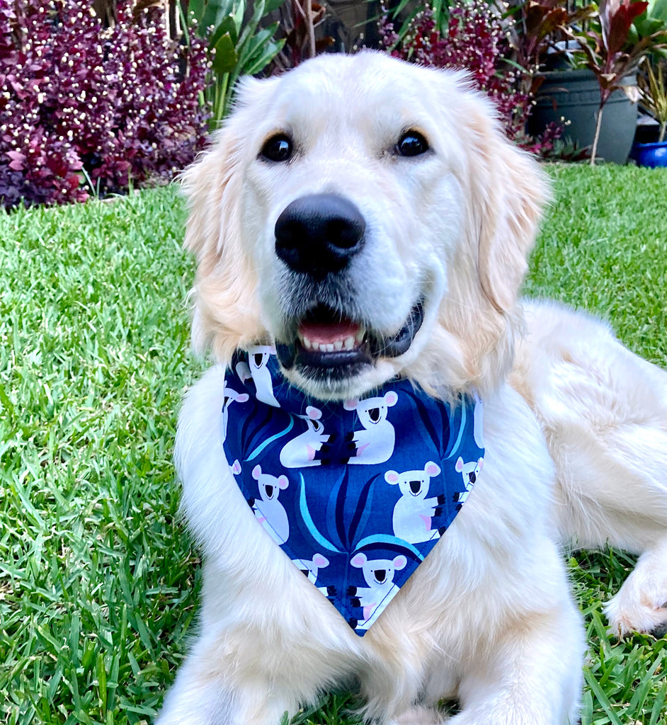 "Handmade Dog Tie On Bandana, ""Blue Koalas"""