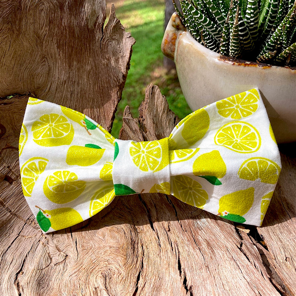 Handmade Dog Tie On Bandana, Bow Tie or Gift Set - GLITTER LEMONS