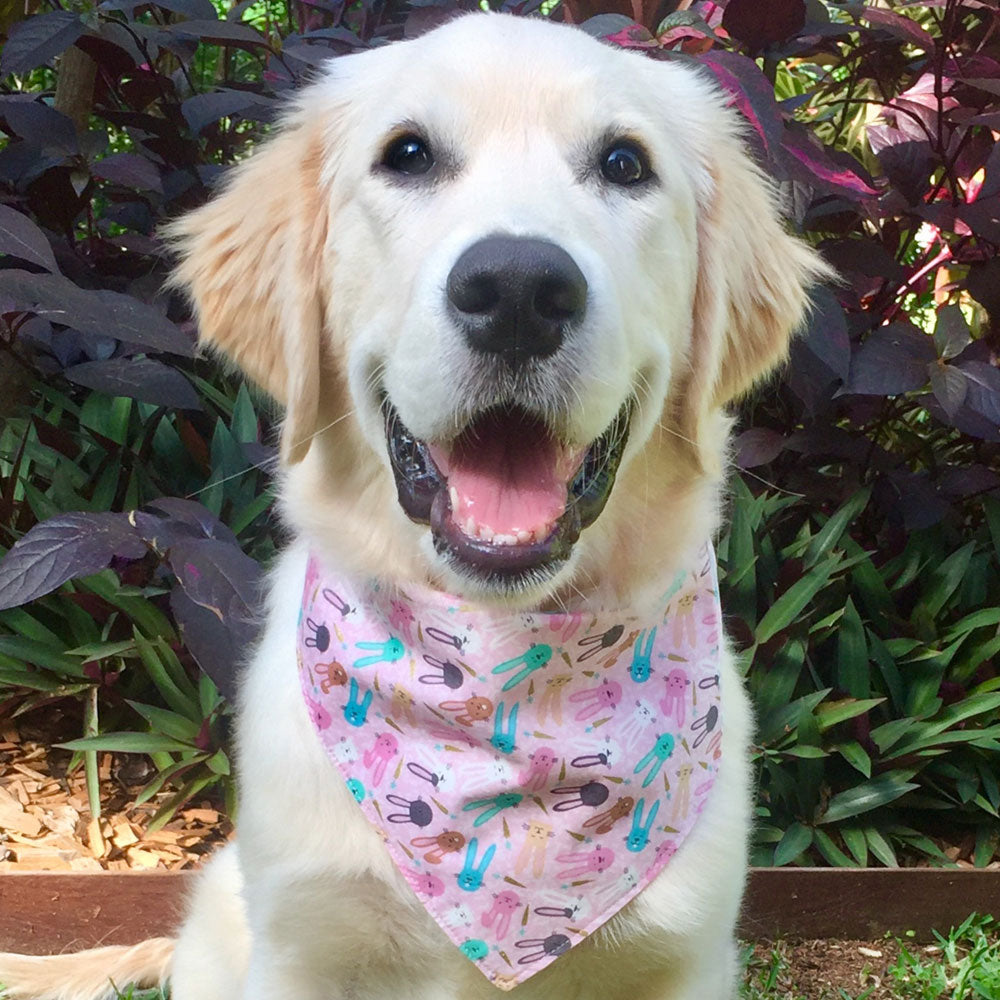 "Handmade Dog Tie On Bandana, Pink ""Bunnies"""