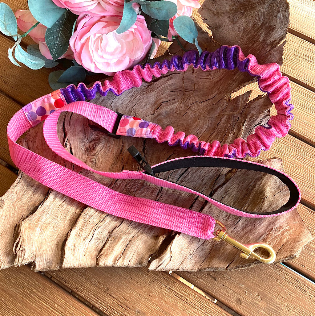 25mm Pink/Purple Long Stretchy Bungee Dog Leash/Lead ideal for Sniffer Walking -