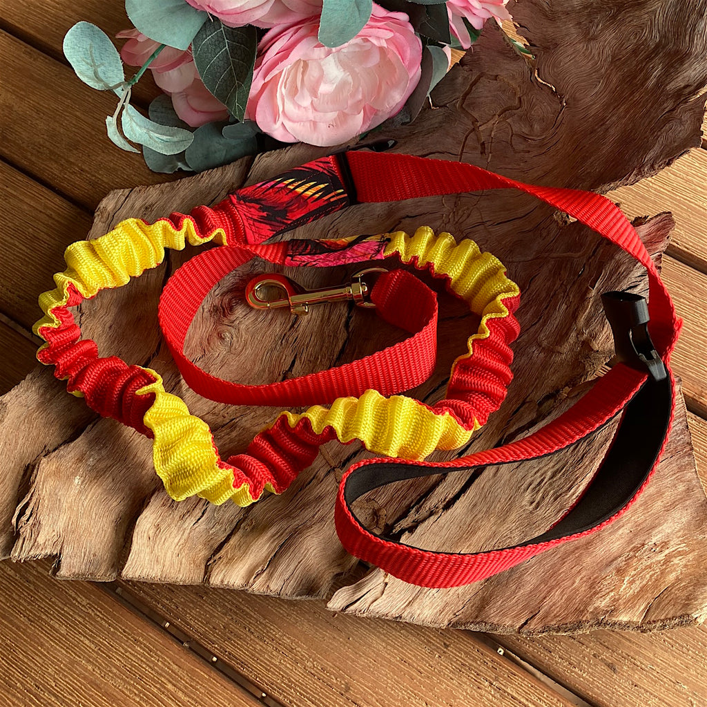 25mm Red/Yellow Long Stretchy Bungee Dog Leash/Lead ideal for Sniffer Walking -