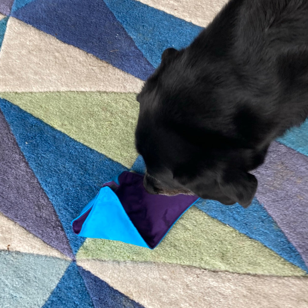 Treat Snuffle Triangle, Dog Enrichment Puzzle - Choice of Fabric