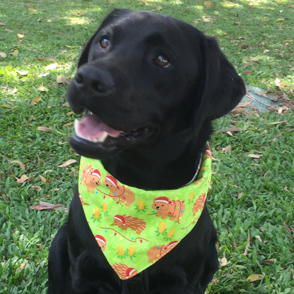 "Xmas Dog Tie On Bandana, ""Wombats & Echidnas"""