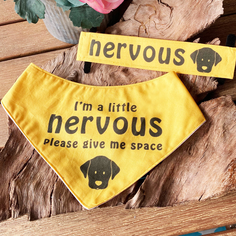 """NERVOUS DOG Bandana and Lead/Collar Strap Set"" - Plain Yellow"