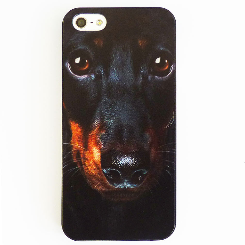 Dachsund Puppy Case / Cover iPhone 5 & 5S