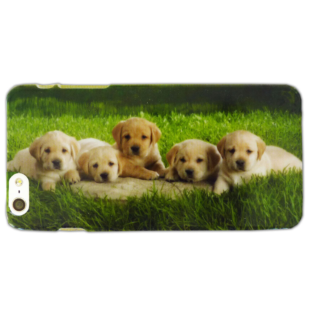 Litter of Golden Puppies Case / Cover iPhone 6PLUS