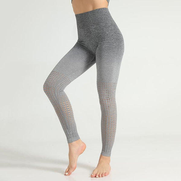 B|Fit Seamless Ombre 3.0 Legging - Grey - B|Fit Amazighld