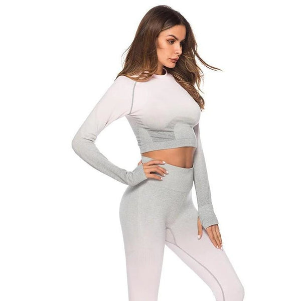 Luna Seamless Ombre Sleeved Crop - Light Pink/Grey - B|Fit Amazighld