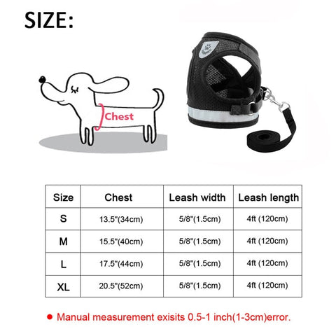 Reflective Small Dog Harness and Leash Set