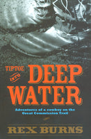 Tiptoe Into Deep Water by Rex Burns