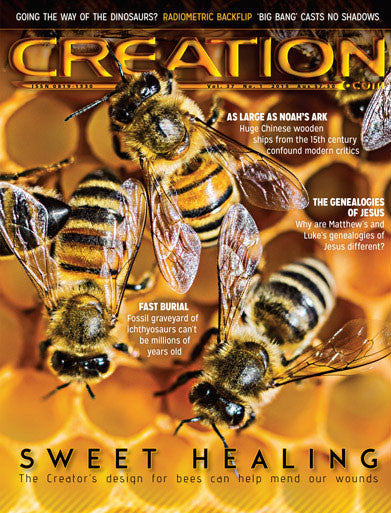Creation Magazine:  Bees Sweet Healing Design (Issue 37:1)