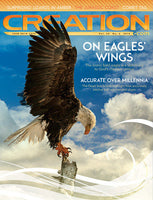 Creation Magazine:  On Eagles Wings  (Issue 38:2)