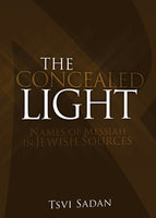 Concealed Light by Tsvi Sadan