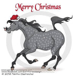 Arabian Christmas Card Pack of 10 cards - SOLD OUT