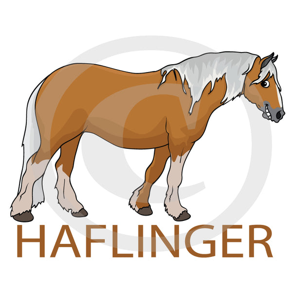 Haflinger float/ car decal