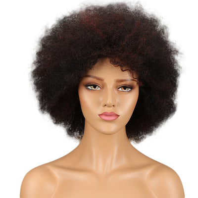 WH Afro Curl | Human Hair Short Curly Wigs For Black Women I Frosted Colors - Noblehair