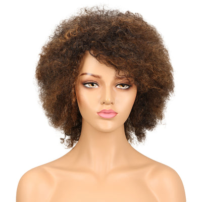 WH Afro Curl | Human Hair Short Curly Wigs For Black Women I Mixed Colors - Noblehair