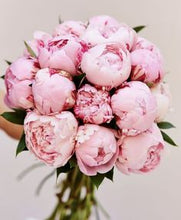 Load image into Gallery viewer, Mixed Peony Bouquet