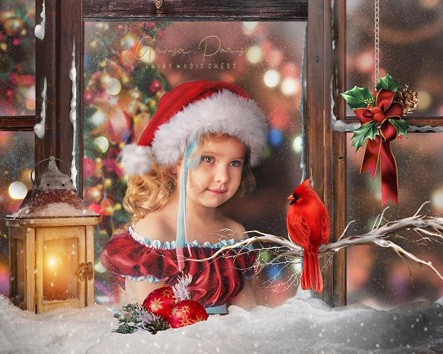 anrusa-paris-fairy-magic-chest,Christmas Digital Background with back, glass and window. Red bird cardinal.,Fairy Magic Chest & Anrusa Paris,digital background / backdrop