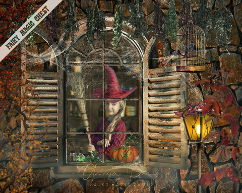 Halloween digital background, window overlay