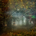 anrusa-paris-fairy-magic-chest - Fairy forest digital background, 2 versions, enchanted place. - Anrusa Paris & Fairy Magic Chest - digital background / backdrop
