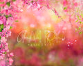 anrusa-paris-fairy-magic-chest - Spring / Summer digital backdrop, Magnolia blossom, 2 overlays included - Anrusa Paris & Fairy Magic Chest - digital background / backdrop
