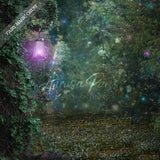 Enchanted forest digital background Fairy Magic Chest