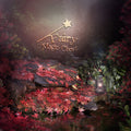 anrusa-paris-fairy-magic-chest - Digital background Enchanted Pond - Anrusa Paris & Fairy Magic Chest - digital background / backdrop