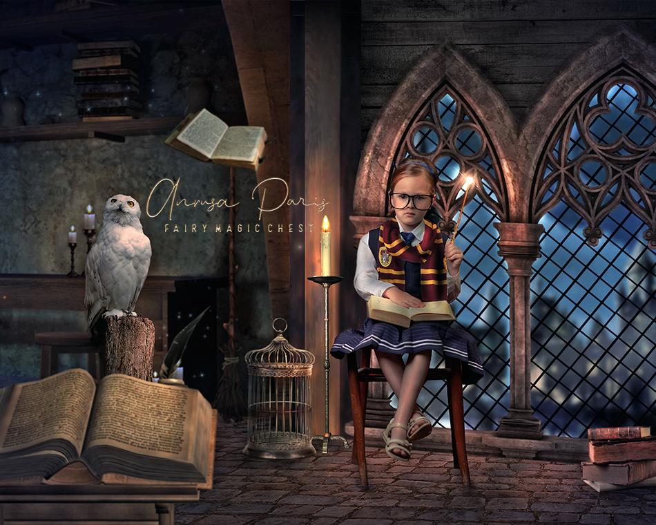 Wizardry School digital background