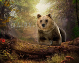 Bear digital background / backdrop