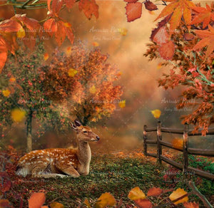 anrusa-paris-fairy-magic-chest - Autumn digital background with fawn, young stag. Creamy forest. Outdoor. - Anrusa Paris & Fairy Magic Chest - digital background / backdrop