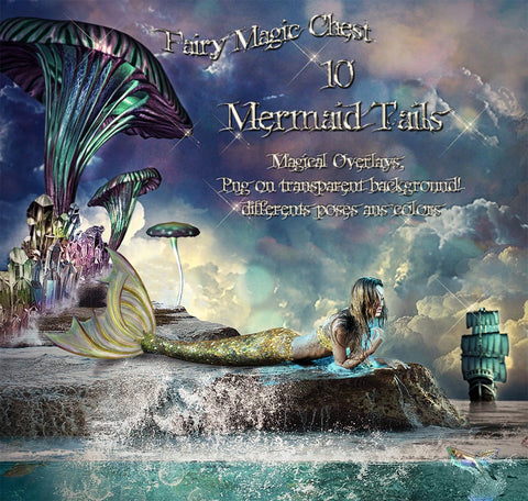 Mermaid tails Fairy Magic Chest