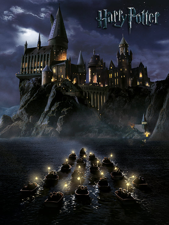 Harry Potter (Hogwarts School) Canvas Print 30 x 40 cm