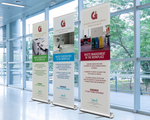 Wide Roll-up Banners (1200mm)