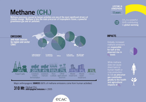 Climate & Clean Air Coalition Infographic