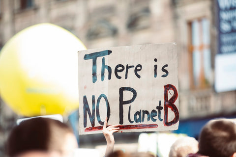 "Climate March Poster Reads ""There Is No Planet B"""