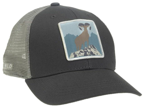 RepYourWater Desert King Hat - 1 Shot Gear
