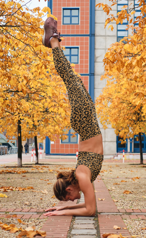 High Waist Mustard Leopard Print Flex Leggings