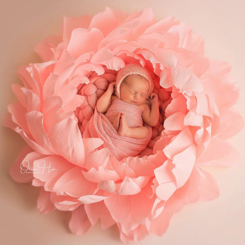 Fox Pink Flowers Baby Bed for Newborn Photo Prop
