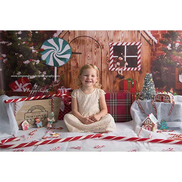 Fox Christmas Cabin Rolled Vinyl Photos Backdrops-Foxbackdrop