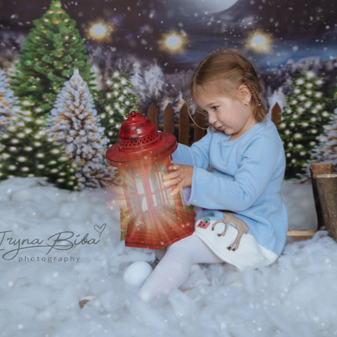 Fox Rolled Night Christmas Children Photos Vinyl Backdrop