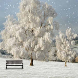 Fox Rolled Winter Snow Trees Vinyl Photography Backdrop